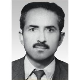 H. Mehmet BİLLUR